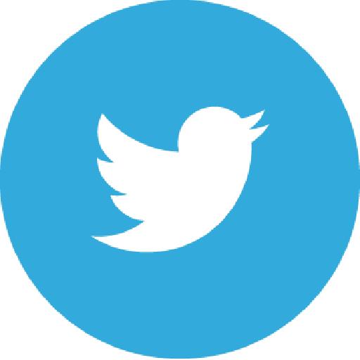 twitter-redondo